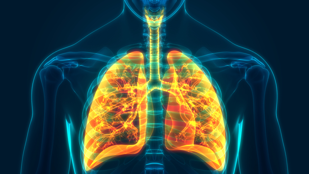 Pulmonary Nodules: What Radiologists Should Recommend